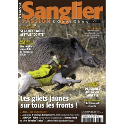 n° 131 SANGLIER PASSION...